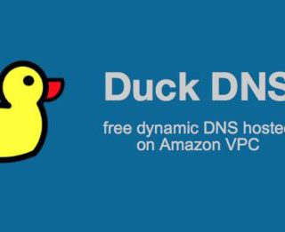 Duck DNS Update Script for MikroTik RouterOS 6.XX Behind NAT